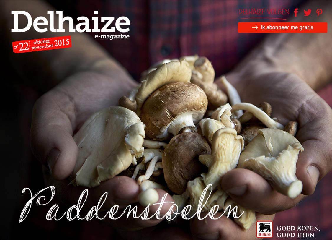 Gicom Delhaize magazine online